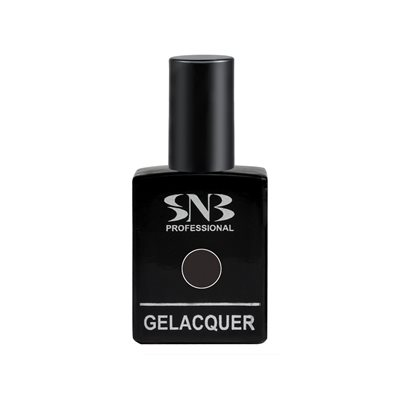 Gel Lacquer Magnetic