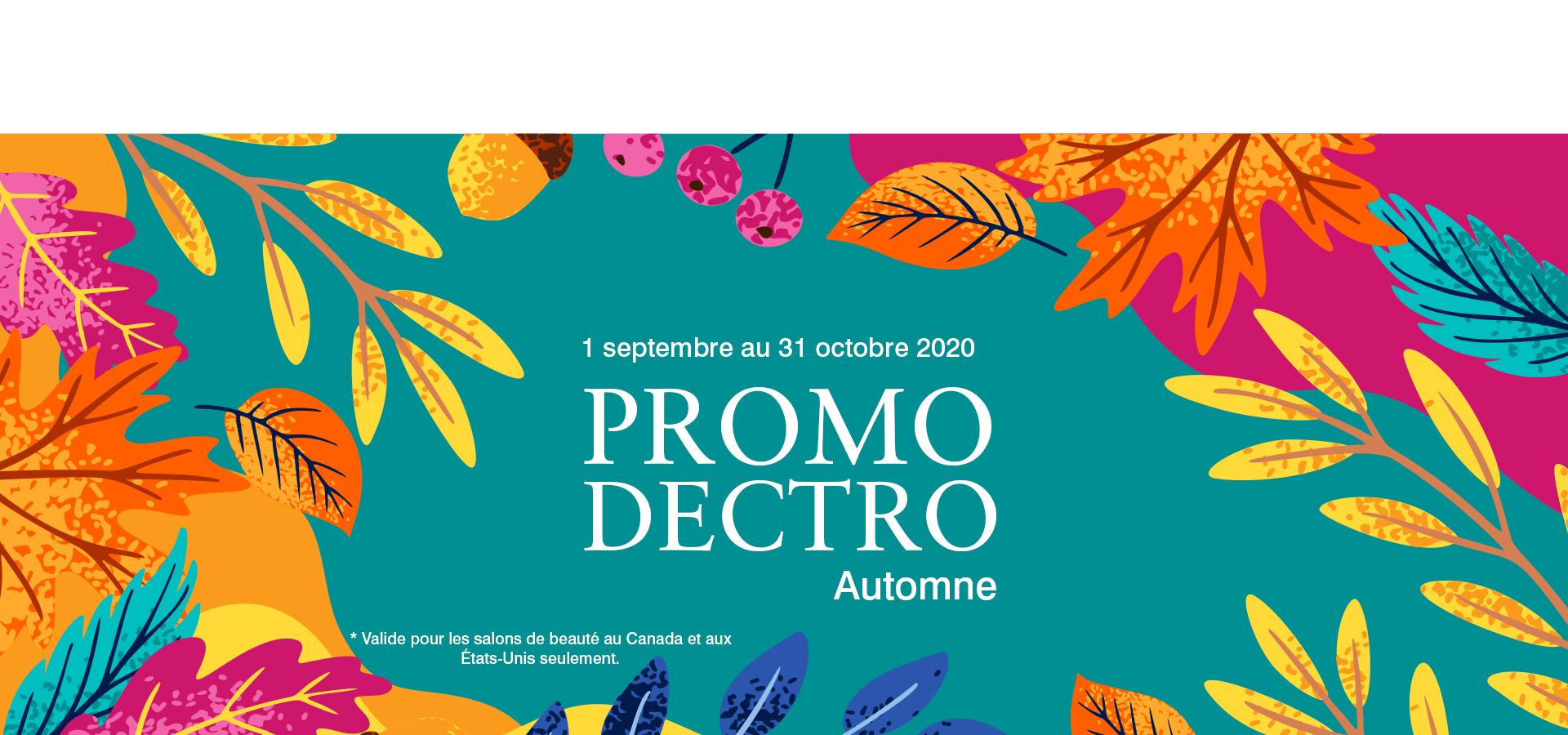 carroussel_promodectro-automne_fr20
